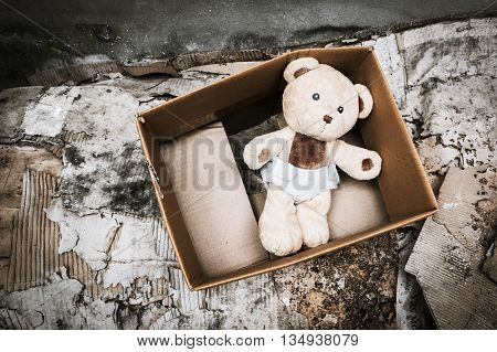 Old teddy bear abandoned piles of papervintage