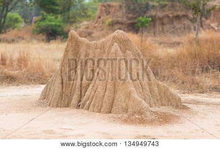 Lalu Park in Sakaeo province Thailand due to soil erosion has produced stranges shapes