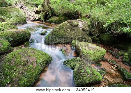 Mountain stream at the foot of the Brocken in the Harz National Park