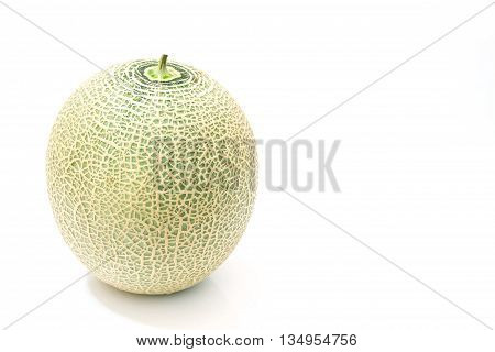 Melon fruit  isolated on a white background