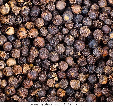 Closeup of lots of dried black peppercorns
