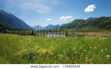 Idyllic Bavarian Landscape With Hay Meadow And Mountain View