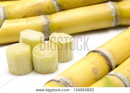 Sugarcane and pieces of sugarcane isolated on white background