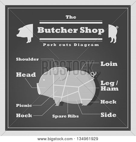 Pork cuts diagram Butcher shop background, vector, illustration