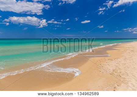 Amazing golden sand beach near Monopolli Capitolo clear sky summer day Apulia region Southern Italy