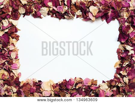 Flower Frame Of Dried Rose Petals In Warm Colors