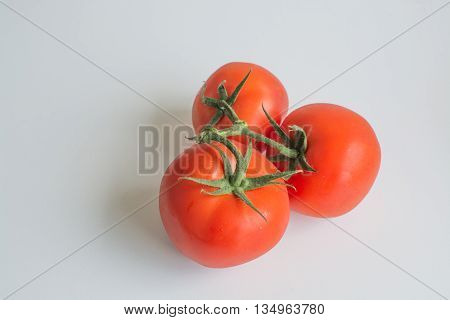 Juicy ripe truss tomatoes on vine isolated on white background