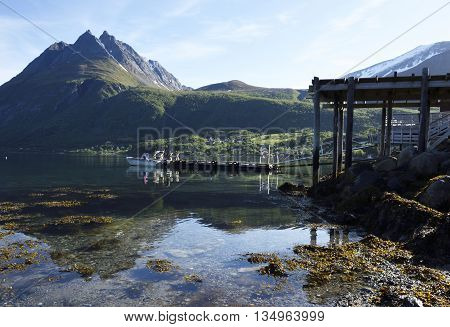 Calm water with seaweed and a jetty with a boat and in the background a high mountain picture from the Nort of Norway.