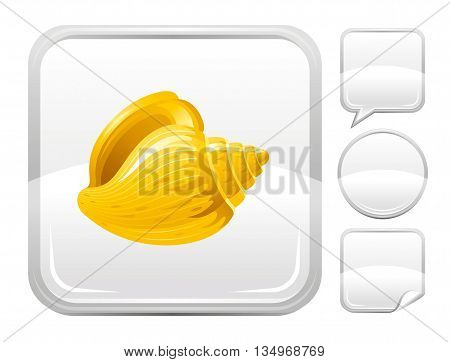 Sea summer beach and travel icon with tropical sea shell on square background and other blank button forms - speaking bubble, circle, sticker