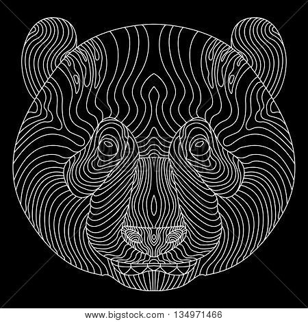 Highly detailed panda or regular bear portrait on black ground