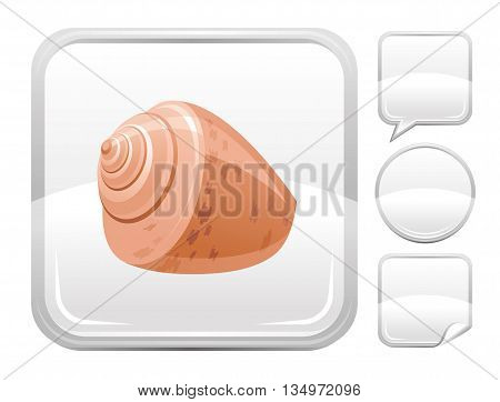 Sea summer beach and travel icon with sea shell on square background and other blank button forms - speaking bubble, circle, sticker