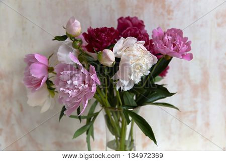 Bouquet of beautiful peonies on wall background
