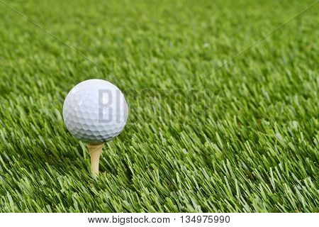 closeup of a golf ball on tee