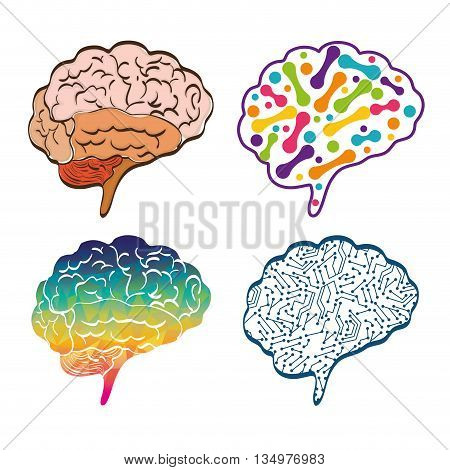 Human organ concept represented by set of brain icon over flat and isolated background