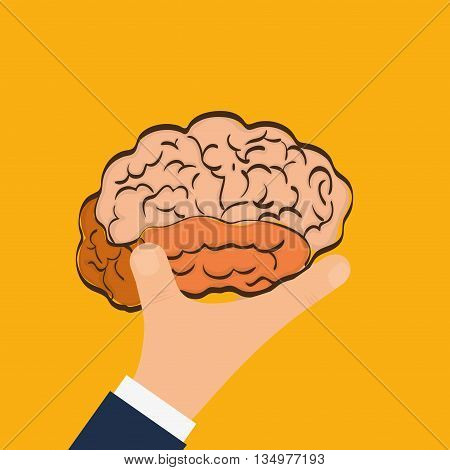 Human organ concept represented by brain and human hand  icon over flat and isolated background