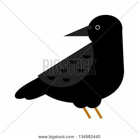 Black raven flat cartoon wildlife bird wild dark vector.