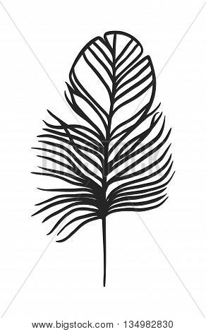 Hand drawn stylized boho feather black color and doodle tribal ornamental black feather.