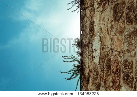 Low Angle View Of Part Of Ancient Stone Wall