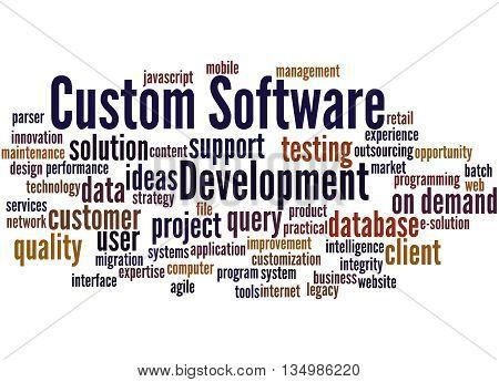 Custom Software Development, Word Cloud Concept 8