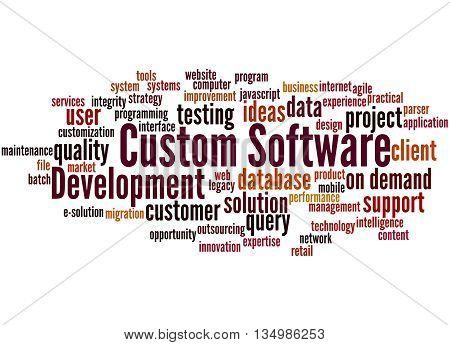 Custom Software Development, Word Cloud Concept 9