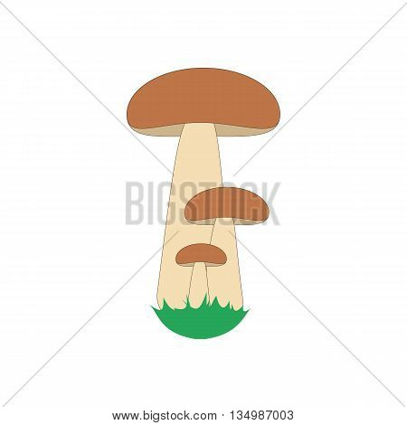 Orange cap boletus on a white background. Vector illustration