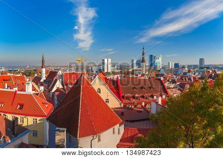 Aerial cityscape with old town hall spire, roofs, Golden Cockerel weather vane and modern office buildings skyscrapers in the background in Tallinn in the day, Estonia
