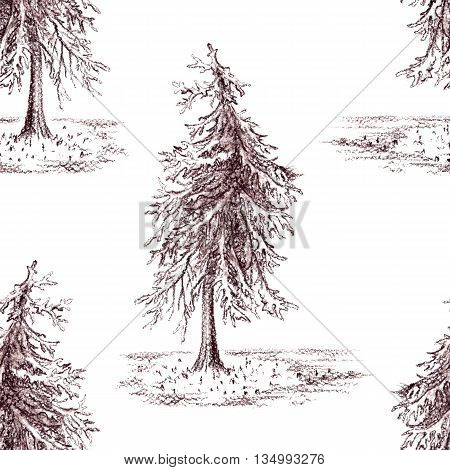 Sketched spruce pine tree sepia seamless pattern background