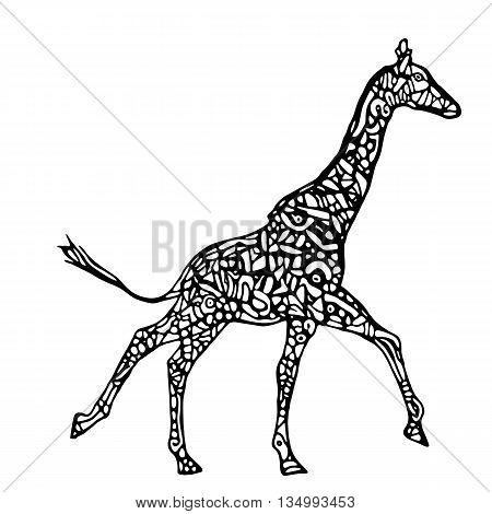 Running giraffe vector. Black and white giraffe illustration