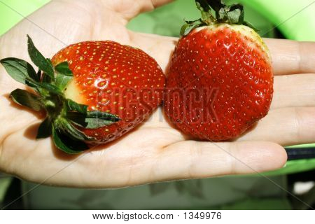 Strawberry_On_The_Hand