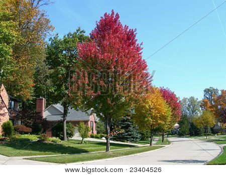 Casa en la subdivisión y paisaje en otoño