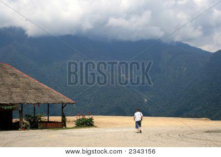 Borneo Scene