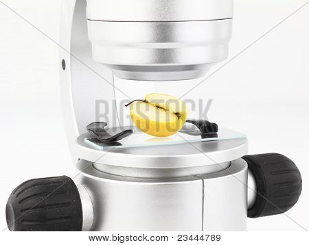 Mikroskop mit einem Apfel auf der Aussichtsplattform