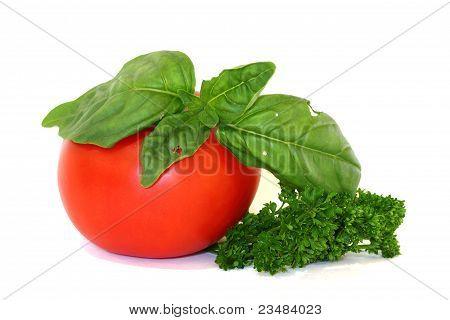 Italian Herbs and Tomato