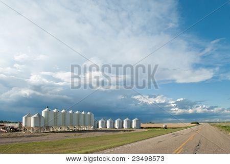 Modern Farm Beside Road