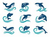 Stylized Pictures Of Marine Animals. Sharks, Fishes And Others. Symbols For Logo Design. Vector Fish poster