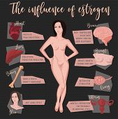 Estrogen Influence Infographic Image Isolated On A Dark Grey Background. Female Sex Hormone And It S poster