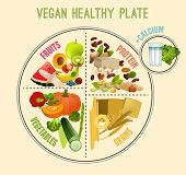 Vegan Healthy Plate. What Food You Need To Eat Daily. Vector Illustration In Bright Colours Isolated poster