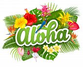Aloha Hawaii Hand Drawn Lettering And Tropical Plants, Leaves And Flowers. Hawaiian Language Greetin poster