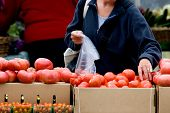 image of farmers market vegetables  - Woman shopping for fresh produce at local farmer - JPG