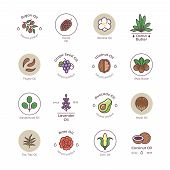 Skincare And Beauty Organic Cosmetics Oil Vector Line Emblems And Logos. Illustration Of Natural Oil poster