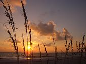 pic of colouder  - A beautiful sunset on the gulf coast USA - JPG