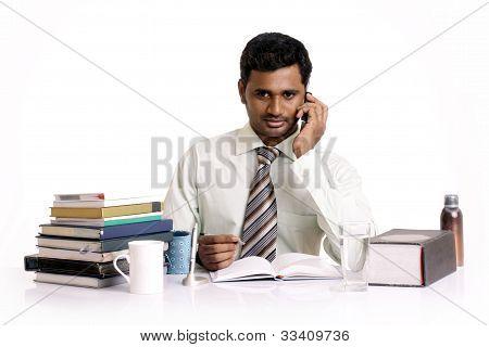 indischer Geschäftsmann posiert