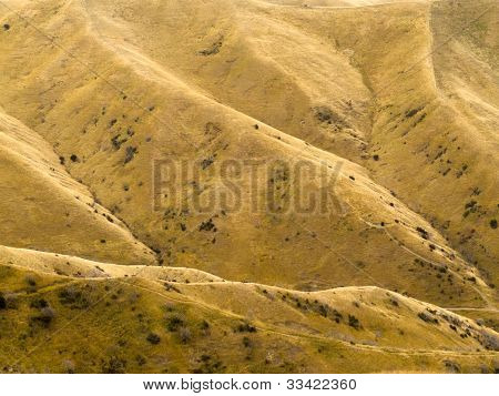 Pastizales en amarillo de ladera de la montaña de sequía