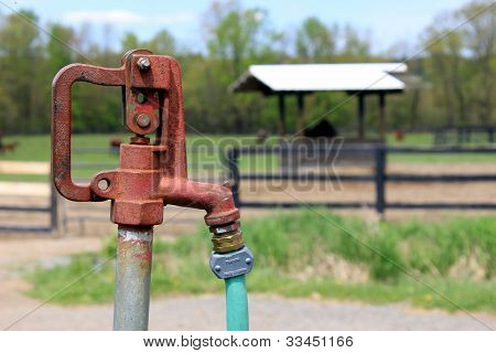 Water for the horses
