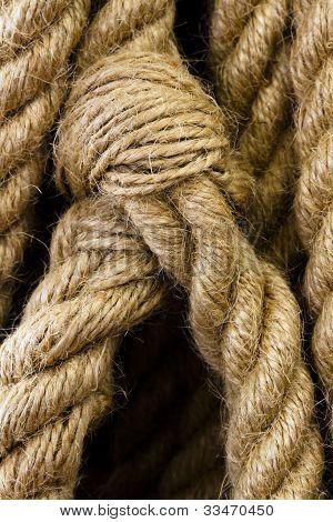Rope Detail