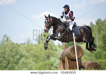 rider on horse is overcomes the obstaclre