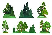 Forest Trees. Green Fir Tree, Forests Pine Composition And Isolated Trees. Foresting Botanical Woodl poster