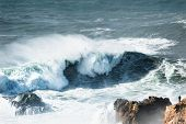 Man Watching Big Waves In Nazare, Portugal. In This Place The Biggest Waves In The World Due To The  poster