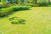 Green Grass, Landscaped Formal Garden, Front Yard With Garden Design, Peaceful Garden, Background De poster