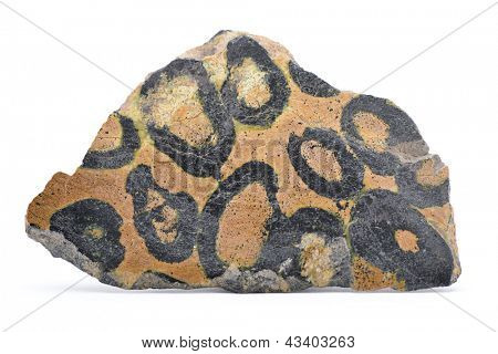 Minério de cromo de leopardo isolado no fundo branco